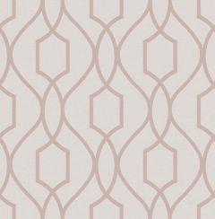 Apex Trellis Metallic Wallpaper Pink & Rose Gold