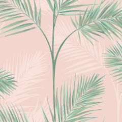 South Beach Exotic Palm Leaf Wallpaper Pink