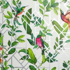 Deco Tropical Birds Wallpaper - White Multi