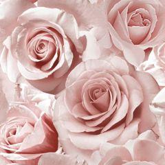 Madison Sparkle Rose Wallpaper Raspberry