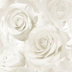 Madison Sparkle Rose Wallpaper Pearl