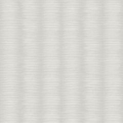 Ombre Metallic Stripe Wallpaper Silver