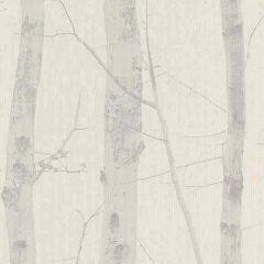 Woodland Trees Wallpaper Beige