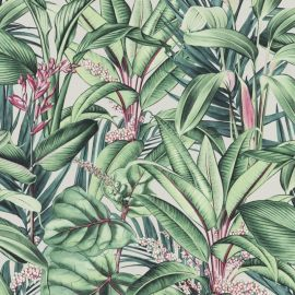 Paradisio Floral Leaves Wallpaper Natural/Green
