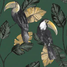 Toucan Trail Wallpaper