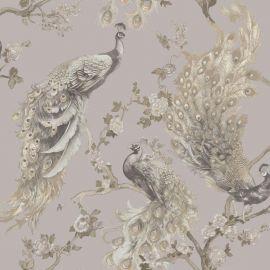 Menali Glitter Peacock Wallpaper Grey