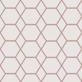 A light pink background with a rose gold hexagon geometric design on top.