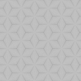A grey background with a detailed star geometric pattern in a shimmering silver overlayed on top.
