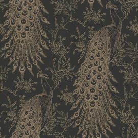 Metallic Peacock Wallpaper Black & Gold