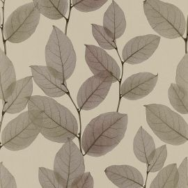 AS Creation X-Ray Leaf Wallpaper Bronze