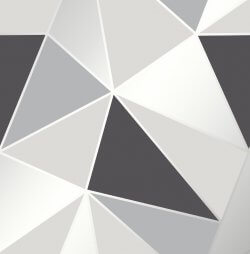 Apex Geo Metallic Wallpaper Black & Silver