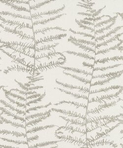 Central Park Fern Tree Wallpaper