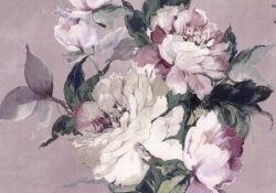 Camellia Madama Butterfly Blush Wallpaper